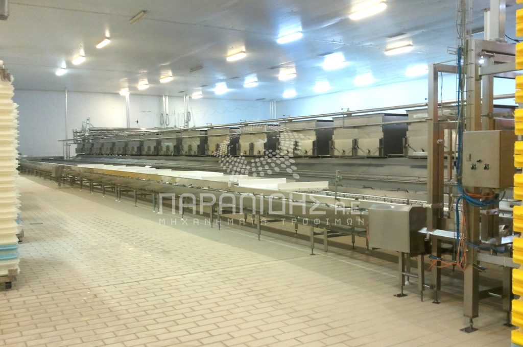 Filling and draining cheese mold conveyor